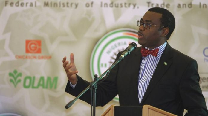 AfDB, World Bank provide $800m for agric transformation in Africa – Adesina