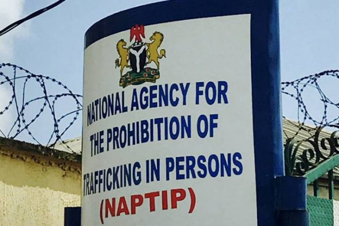 NAPTIP intercepts 39 victims of illegal migration