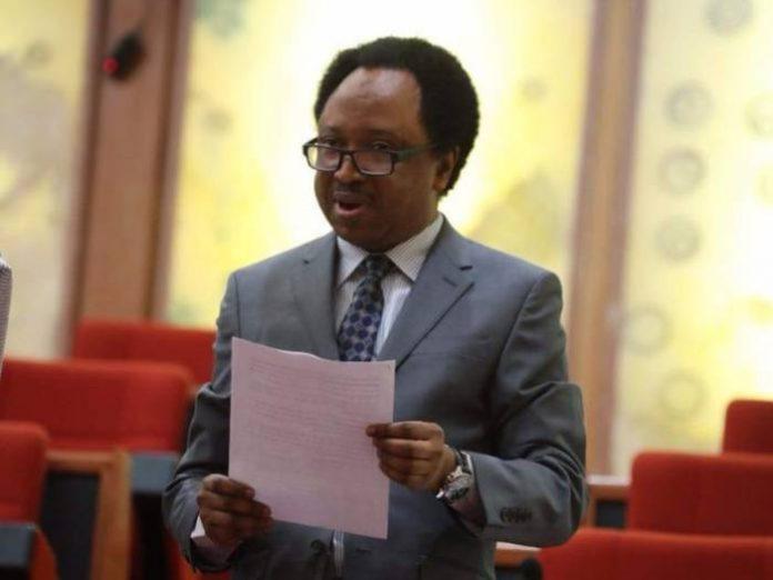 Senator Shehu Sani blasts Governors who spend days meeting with Buhari in Abuja