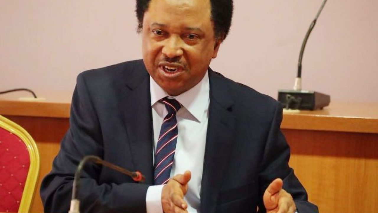 Shehu Sani reacts as CBN opposes MTN new charges
