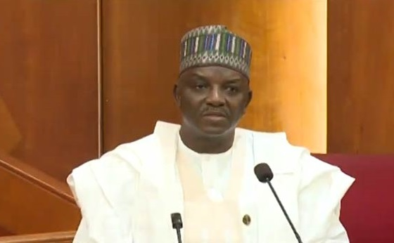 Buhari's Minister suspends MD Rural Electrification Agency, Ogunbiyi