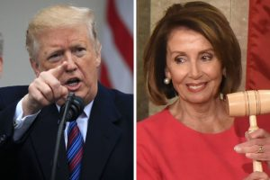 She's A Sick Puppy- Donald Trump Drags Nancy Pelosi