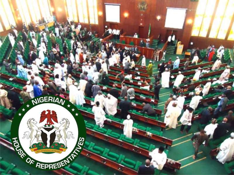 Photo of Reps ask FG to develop 40-year smart strategy plan