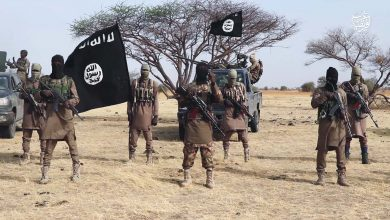 Photo of Boko Haram Killed 13 District Heads And Many Ward Heads In Their Domain – Shehu of Borno