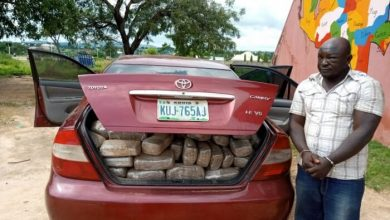 Photo of NDLEA Arrests Dismissed Staff With Dried Weeds In Niger