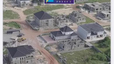 Photo of Explore The World Of Amen Estate