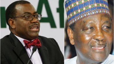 Photo of Be Careful Of Misinformation – AFDB President, Adesina Defends Gowon