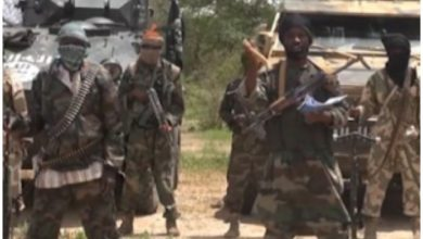 Photo of Amnesty Intl. Drags Military, Boko Haram Killing Aged People In Nigeria