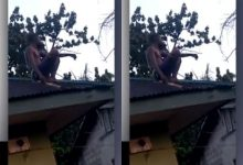 Photo of Wizard Allegedly Returning from Coven Crash Lands on Roof Top in Delta (Video/photos)