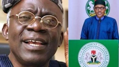 Photo of Falana: Malami's Statement is Faulty, NASS Can Summon Buhari