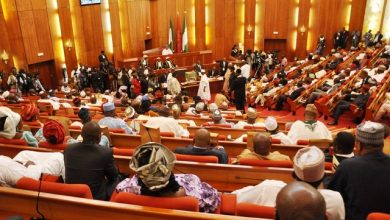 Photo of Best Option to Tackle Insecurity is State Police — NASS