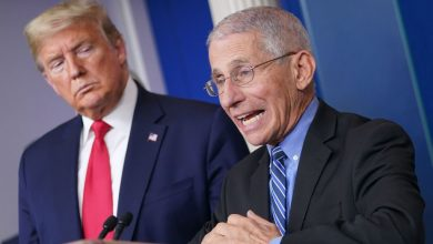 Photo of Trump: 'He did things that were terrible' when I contradicted him says Fauci