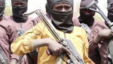 Photo of Boko Haram: It Is Time for Buhari to Engage Mercenaries – Borno Elder
