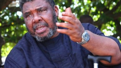 Photo of Pete Edochie Tags Feminism As The Cause Of Domestic Violence In Marriage