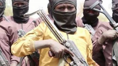 Photo of Boko Haram Recruiting and Training Photos Of Child Soldiers