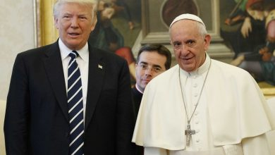 Photo of Pope, using Shakespeare, makes climate change appeal