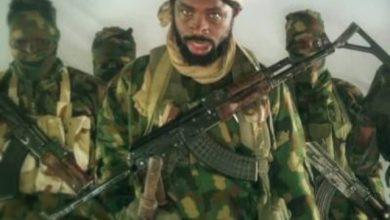 Photo of Boko Haram: Shakau Kills Own Commander, Appoints New One