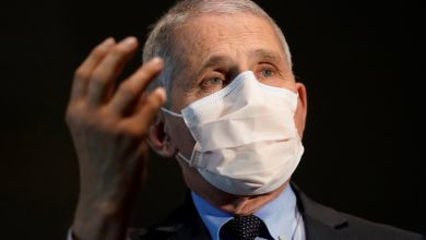 Photo of Fauci accused of 'ramming through' dangerous virus research funding without telling White House