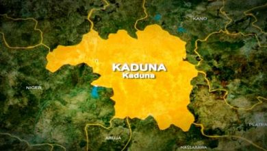 Photo of Kaduna Polytechnic Students Released After One Month