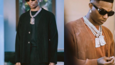 Photo of I'm Capable Of Selling My Parents' House To See Wizkid – Lady Spills
